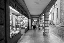 Libreria-tarantola