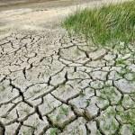Cambiamenti climatici. Un incontro pubblico a Udine