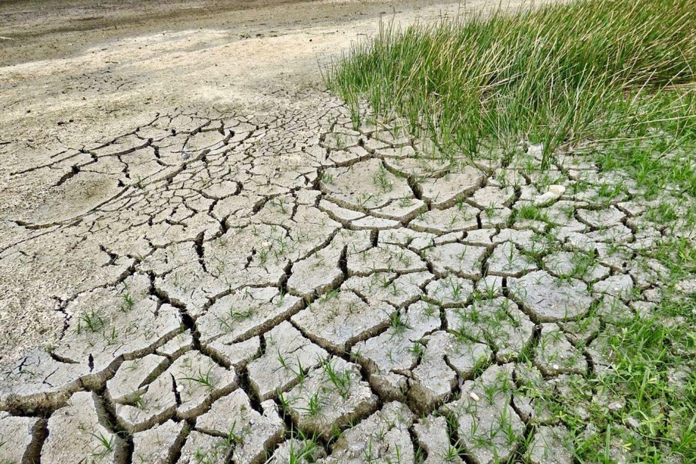 cambiamenti-climatici-e-innovazione-tecnologica